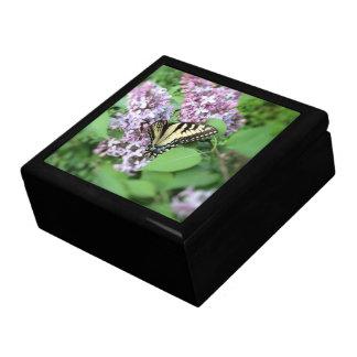 Caja del recuerdo - Y Swallowtail en lila Joyero Cuadrado Grande