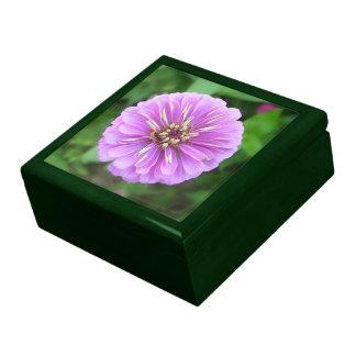 Caja del recuerdo - Zinnia natural de la lila Caja De Recuerdo