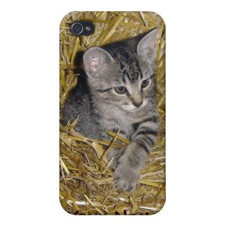 Caja del teléfono celular del gato iPhone4 del gra iPhone 4 Fundas