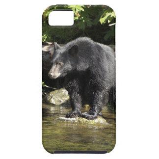 Caja del teléfono de la fauna de la localización iPhone 5 funda