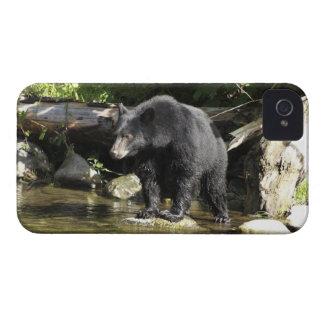 """Caja del teléfono de la fauna de la """"localización funda para iPhone 4 de Case-Mate"""