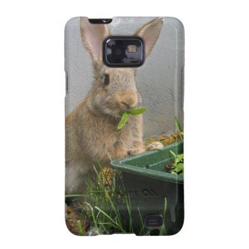 Caja del teléfono del conejo de conejo de rabo samsung galaxy s2 carcasas