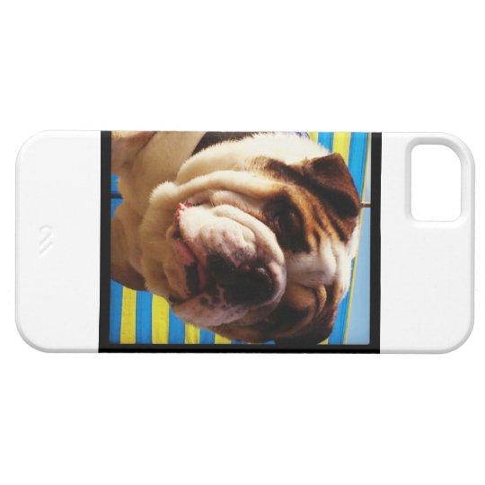Caja del teléfono del dogo funda para iPhone SE/5/5s