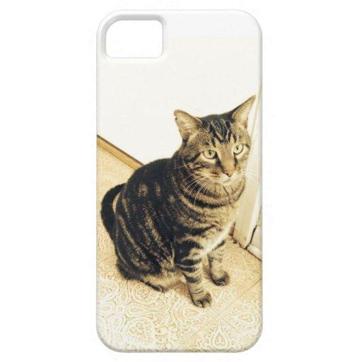 caja del teléfono del gato del iPhone 5/5s iPhone 5 Case-Mate Cobertura