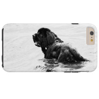 Caja del teléfono del perro de Terranova Funda De iPhone 6 Plus Tough