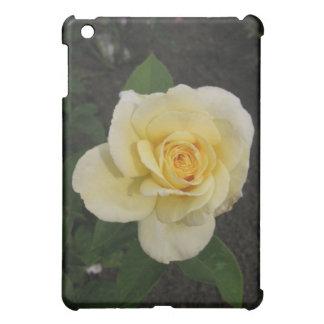 Caja del Yo-Cojín del rosa amarillo