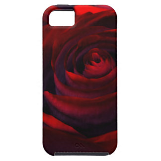 Caja dura color de rosa híbrida (iPhone 5) iPhone 5 Carcasa