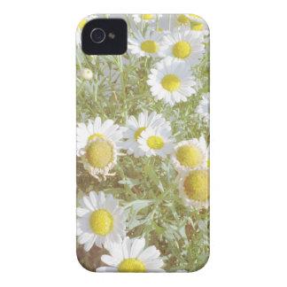 Caja en colores pastel del iphone de la fotografía Case-Mate iPhone 4 protectores