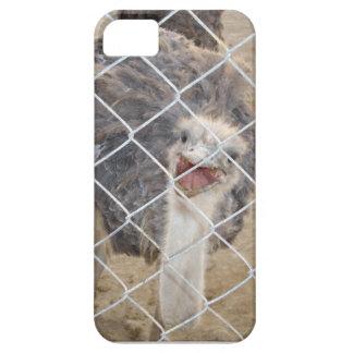 Caja enojada del teléfono de la avestruz I Funda Para iPhone SE/5/5s