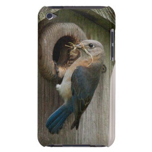 Caja femenina de la mota del tacto de iPod del Blu Case-Mate iPod Touch Coberturas
