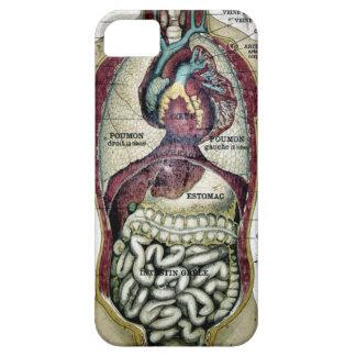 Caja francesa de la casamata de la anatomía del iPhone 5 Case-Mate coberturas