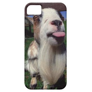 Caja fresca del teléfono de la cabra iPhone 5 fundas