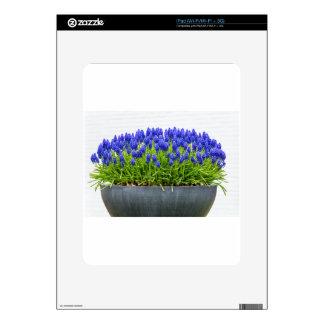 Caja gris de la flor del metal con los jacintos de skins para eliPad