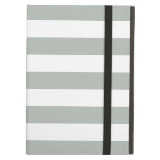 Caja gris del aire del iPad de las rayas