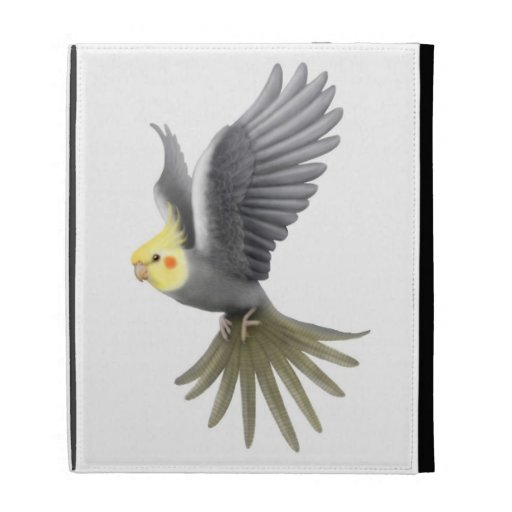 Caja gris del iPad del loro del Cockatiel que vuel