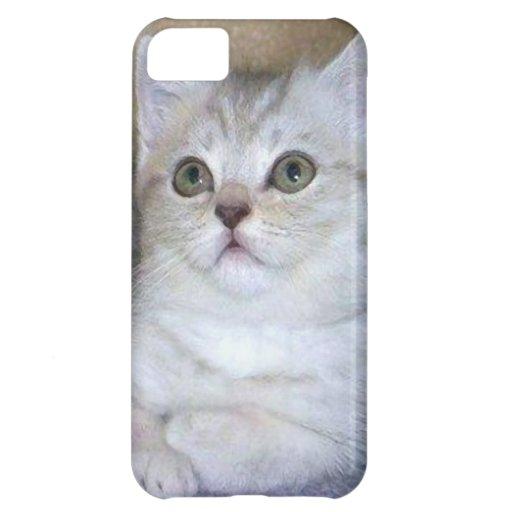 Caja gris del teléfono de la casamata del iPhone 5