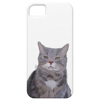 Caja gruñona del teléfono del gato, ejemplo del funda para iPhone SE/5/5s