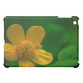 Caja hermosa del cojín del verde I con la flor ama