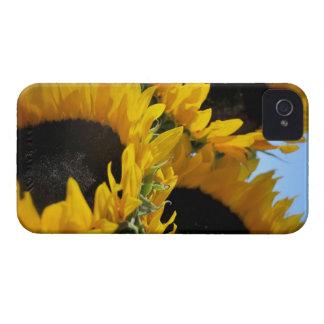 Caja intrépida de Blackberry Barely There de los iPhone 4 Case-Mate Protectores