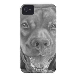Caja intrépida de Blackberry de los perros grandes iPhone 4 Fundas