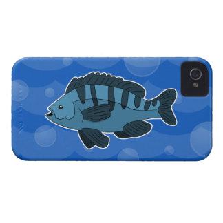 Caja intrépida de Blackberry de los pescados iPhone 4 Funda