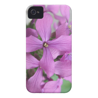 Caja intrépida de Blackberry de los Wildflowers iPhone 4 Case-Mate Carcasa