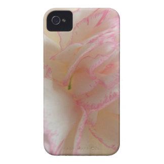 Caja intrépida de Blackberry del clavel rosado y Carcasa Para iPhone 4