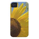 Caja intrépida de Blackberry del girasol feliz iPhone 4 Case-Mate Cobertura