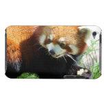 Caja linda de iTouch del oso de panda roja Case-Mate iPod Touch Carcasa