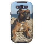 Caja linda de la galaxia de Samsung del perro del  Galaxy S3 Carcasa