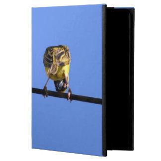 Caja linda del aire del iPad del chirrido