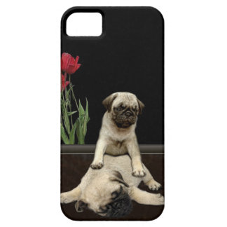 Caja linda del teléfono de los Perro-amantes de lo iPhone 5 Protectores