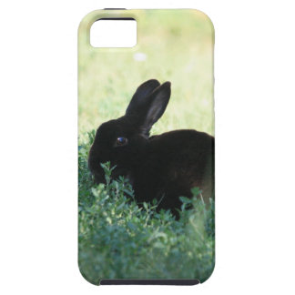 Caja negra del ambiente del iPhone 5 del conejito Funda Para iPhone SE/5/5s