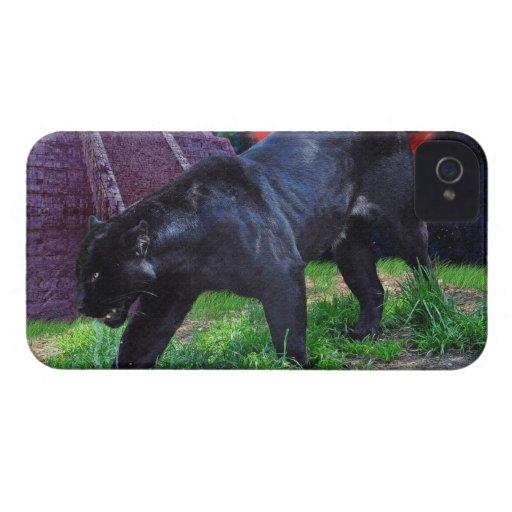 Caja negra del iPhone 4 de la fantasía de Jaguar Funda Para iPhone 4