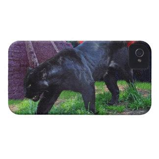 Caja negra del iPhone 4 de la fantasía de Jaguar iPhone 4 Fundas