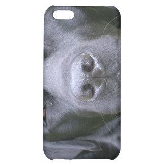 Caja negra del iPhone 4 del perro del labrador ret