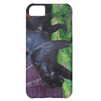 Caja negra del iPhone 5 de la fantasía de Jaguar Funda Para iPhone 5C