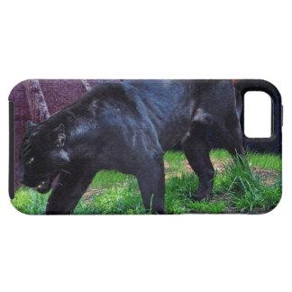 Caja negra del iPhone 5 de la fantasía de Jaguar iPhone 5 Carcasa