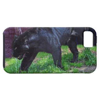 Caja negra del iPhone 5 de la fantasía de Jaguar iPhone 5 Funda