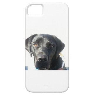 Caja negra del iPhone del laboratorio iPhone 5 Case-Mate Cobertura