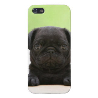 Caja negra linda del teléfono del perrito del barr iPhone 5 carcasa