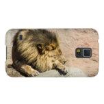 Caja perezosa del teléfono del león