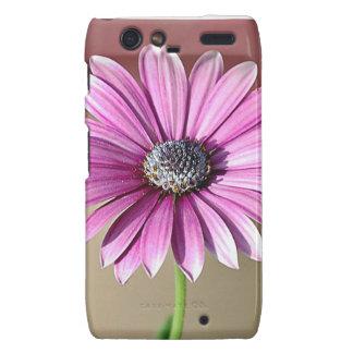 Caja púrpura de la flor para Motorola Droid RAZR Motorola Droid RAZR Funda