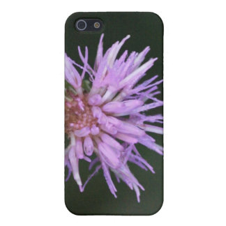 Caja púrpura de la mota de Iphone 4/4s del Wildflo iPhone 5 Fundas