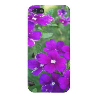 Caja púrpura del iPhone 4 de la flor iPhone 5 Protectores
