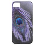 Caja púrpura del iPhone 5 de la pluma del pavo rea iPhone 5 Funda