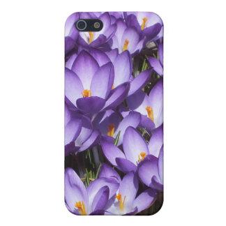 Caja púrpura del iPhone 5 de las azafranes iPhone 5 Carcasas