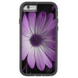 Caja púrpura del iPhone de la flor de la margarita