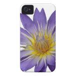 Caja púrpura del lirio de agua (con el fondo blanc iPhone 4 Case-Mate carcasas