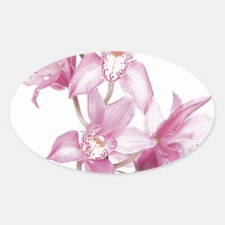 Caja púrpura hermosa de la orquídea pegatinas de óval